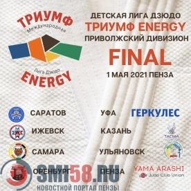 В Пензе состоится финал Приволжского дивизиона детской лиги дзюдо