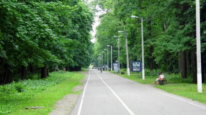 Наулице Лермонтова планируют обустроить 80 новых парковочных мест