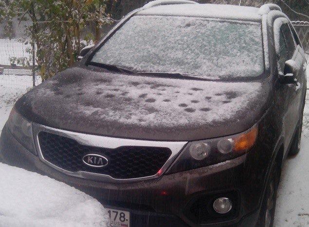 Угнанный вПензе автомобиль иего похитителя отыскали вСаратове