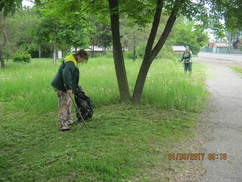 ВПензе правый берег Суры очистили от ветвей имусора