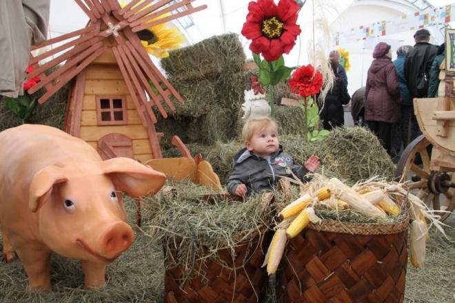 Ярославская область примет участие вагропромышленной выставке «Золотая осень» в столице России